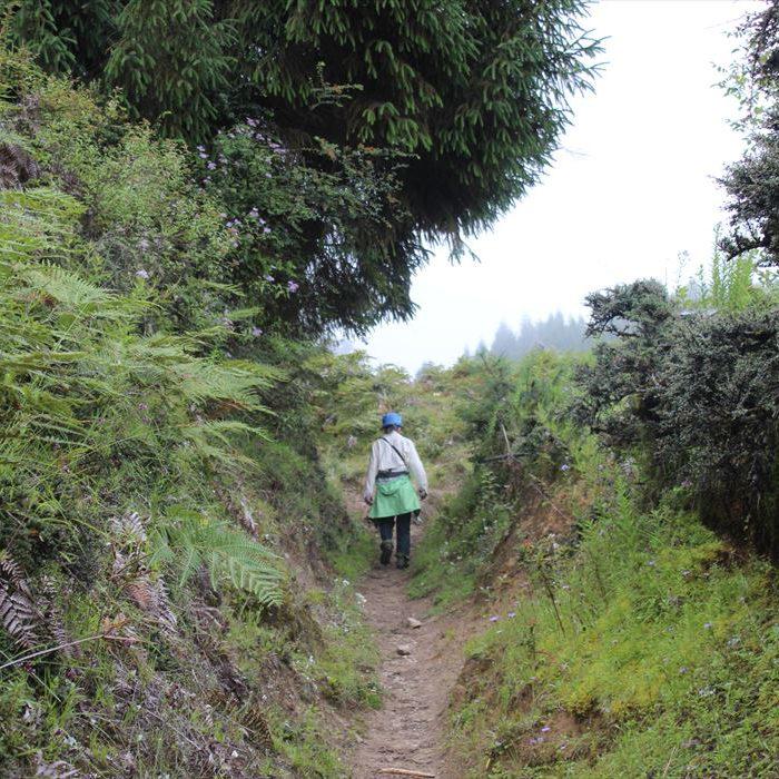 ブータンの山道