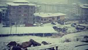 ティンプーで初雪!