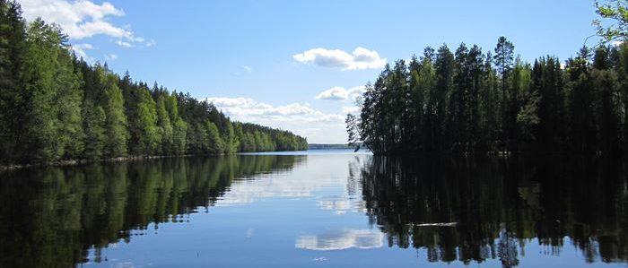 フィンランドの森と湖