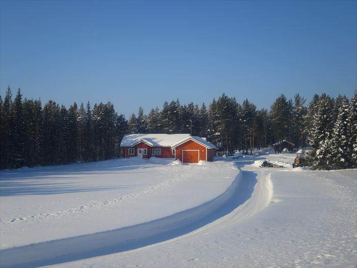 冬の森とロッジ