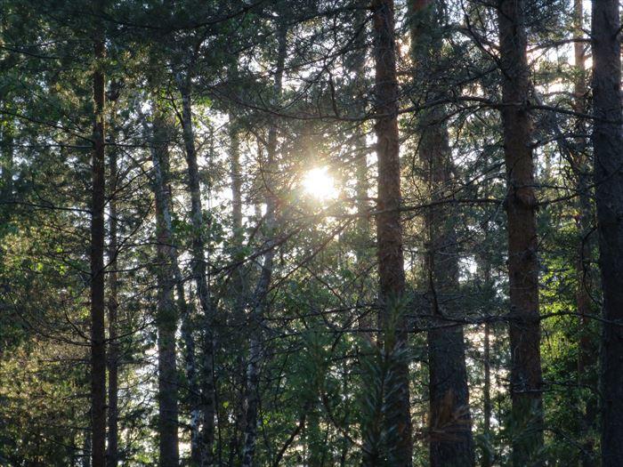 ヌークシオ国立公園