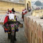 象のタクシー(アンベール城)