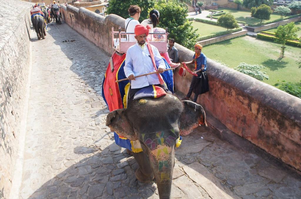 象のタクシー