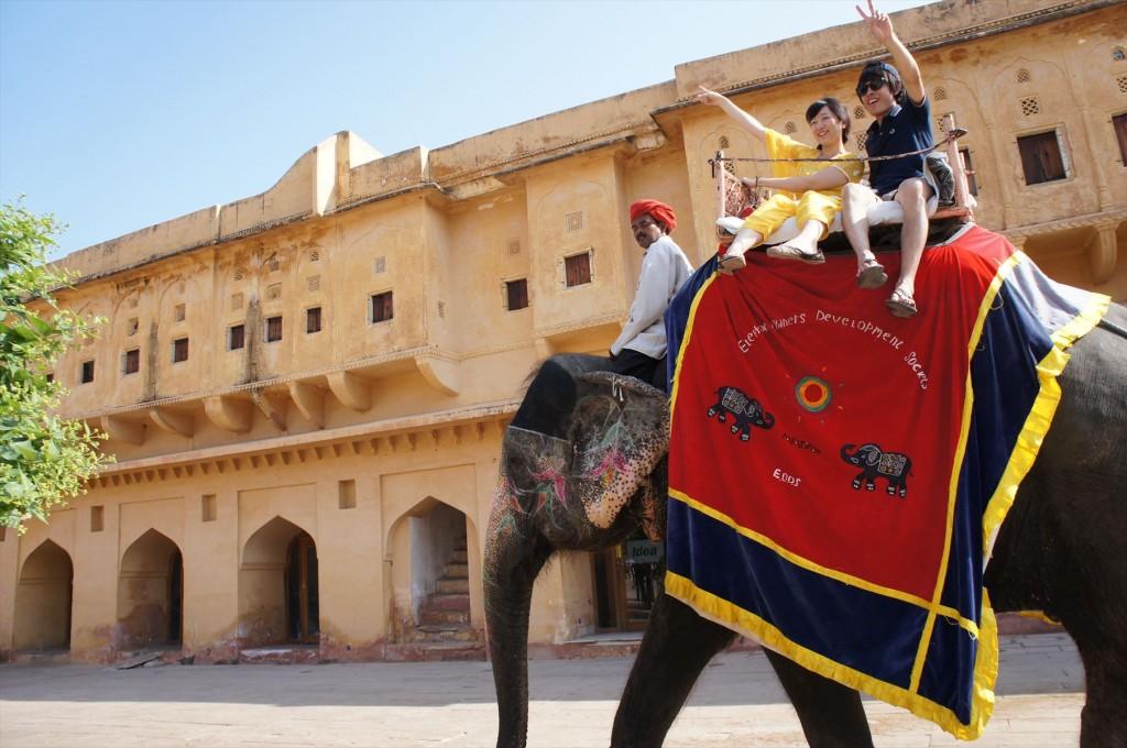 笑顔のこぼれる、象のタクシー