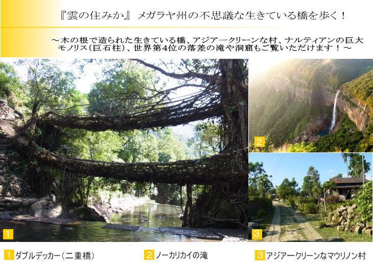 『雲の住みか』メガラヤ州の不思議な生きている橋を歩く!