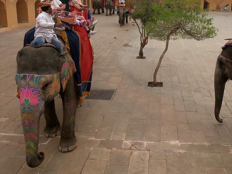 かわいくお化粧しているタクシーの象さんたち