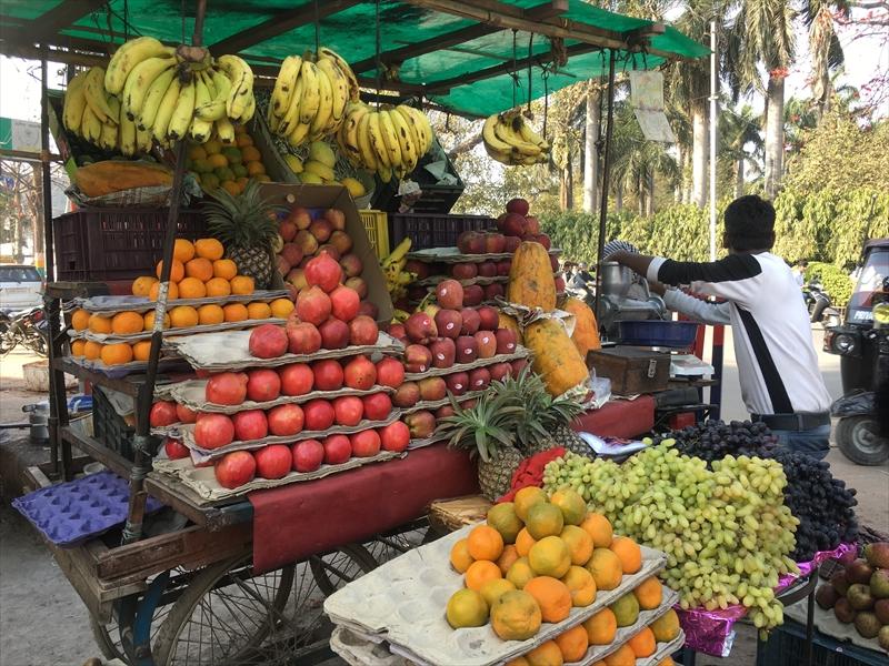 バラナシのフルーツ販売の露店。バナナやオレンジ、ぶどうなど様々なフルーツを買うことができます。
