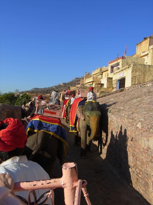 アンベール城 象のタクシー