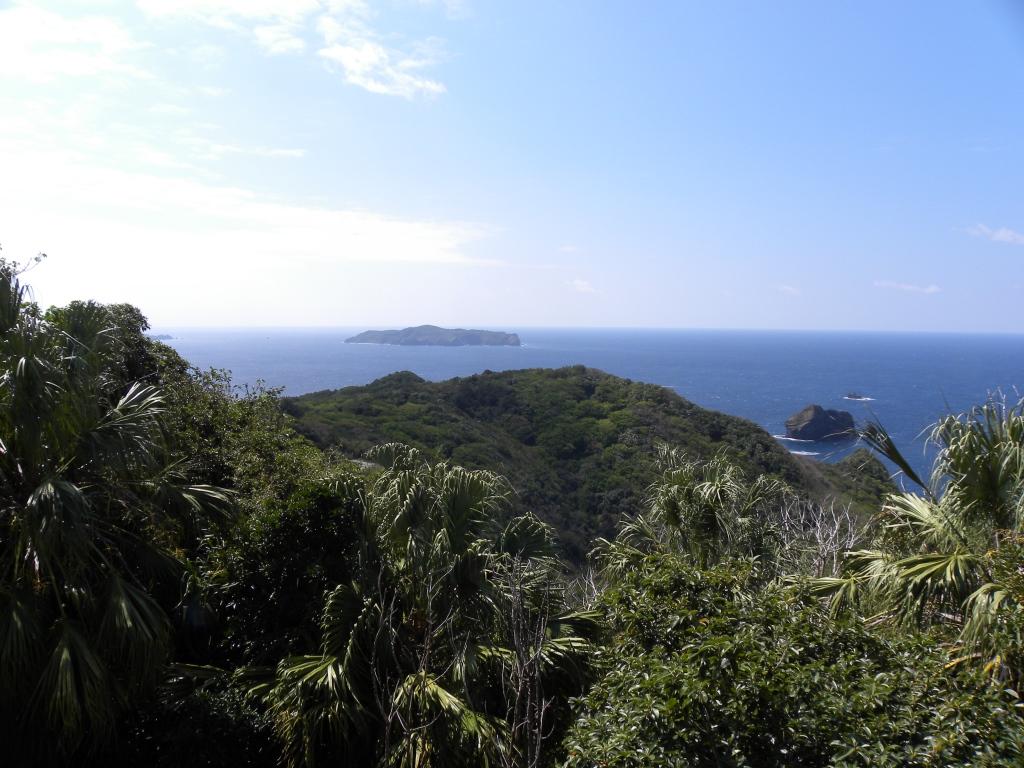 小笠原諸島の美しい自然