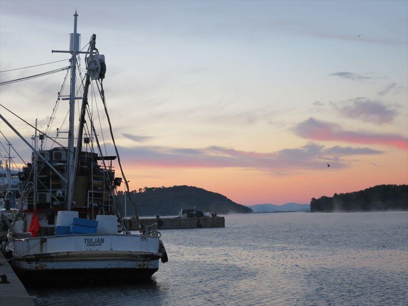 クロアチアのマグロ養殖場 カリ・ツナの夜明け