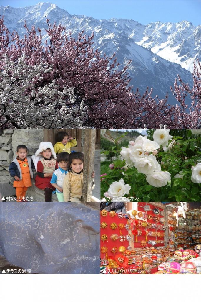 杏の花咲く桃源郷フンザとスカルドゥを訪ねる 11日間