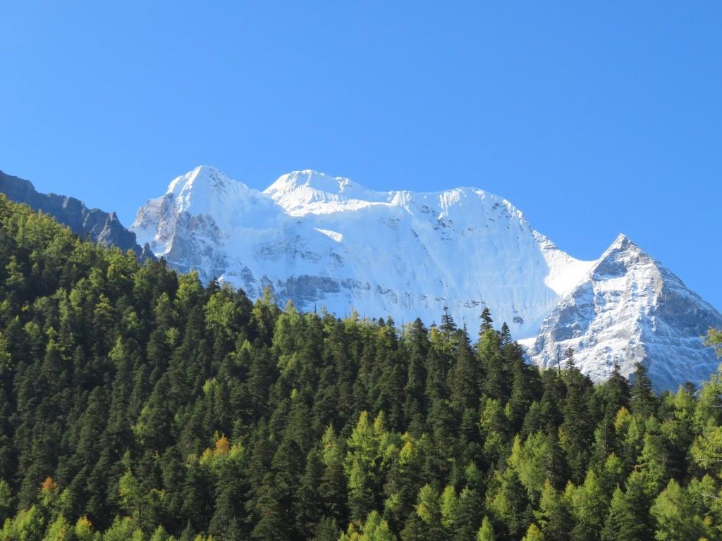 空と山と森