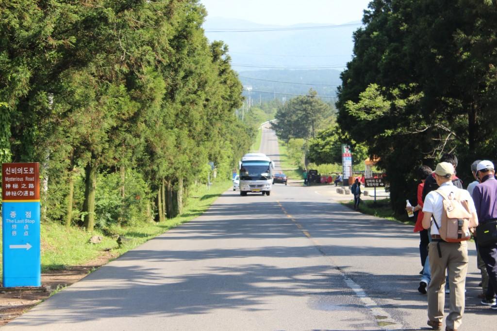 済州島 トッケビ道路