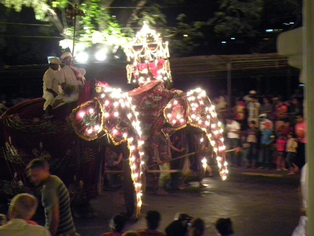 ペラヘラ祭り・ゾウの行進