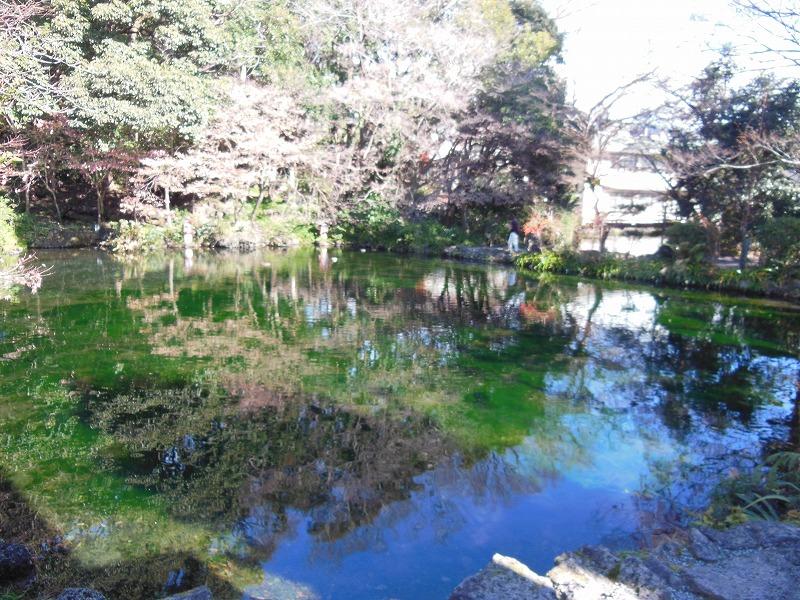 浅間大社の湧玉池