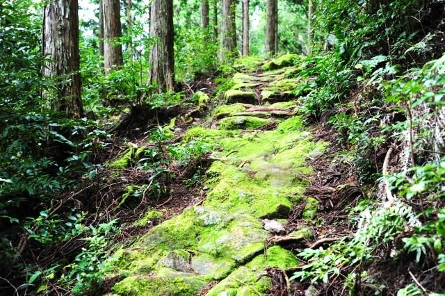 三重県 世界遺産 熊野古道