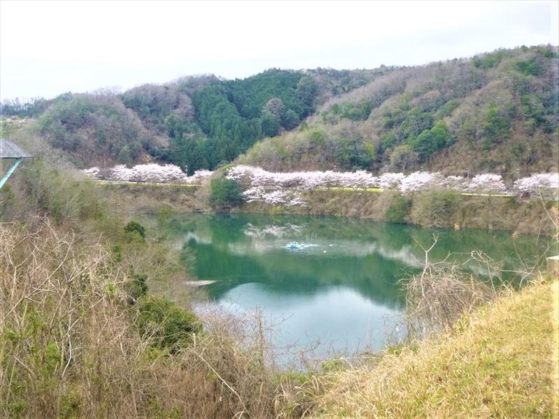 京都みなみやましろ 月ヶ瀬湖