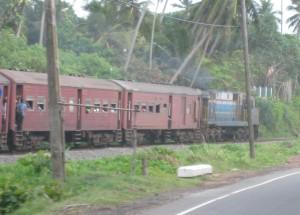 ゴールロード沿いを走る列車
