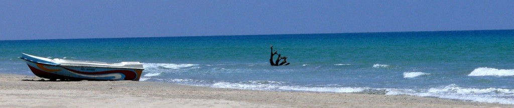 トリンコマリーの白い砂浜