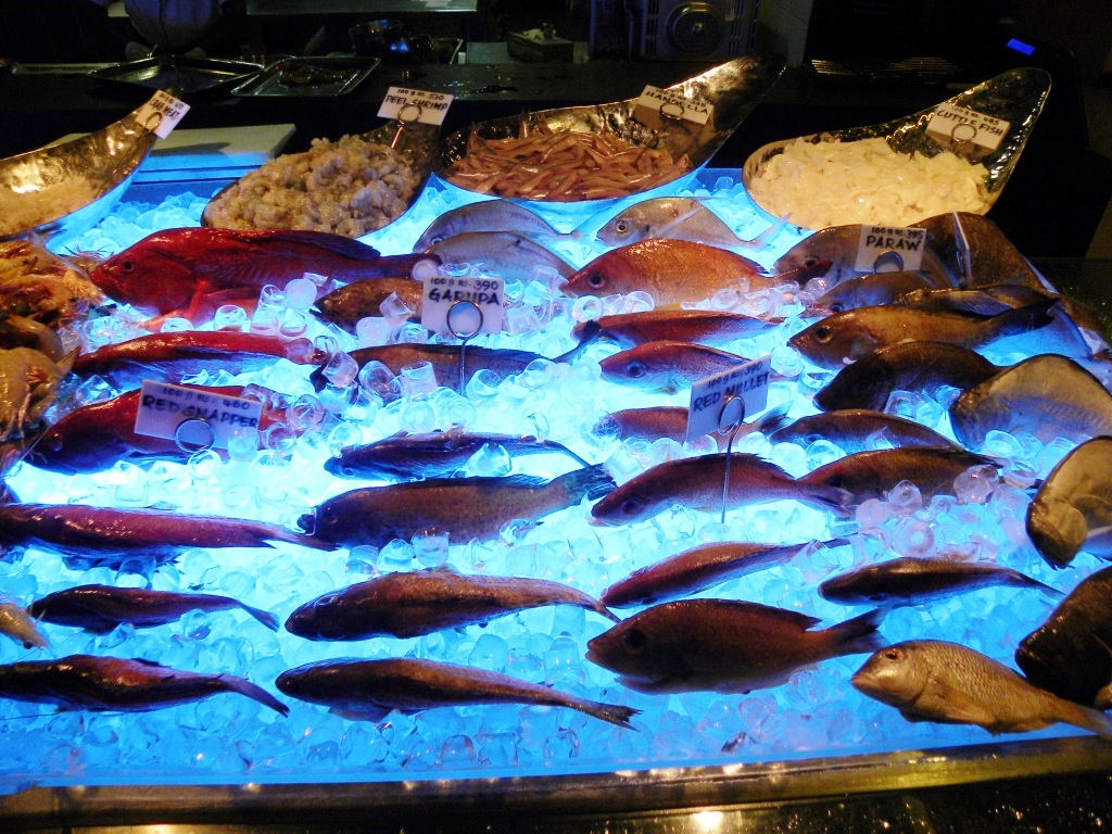 色とりどりの新鮮な魚