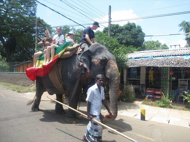 椅子つきの象に乗る観光客